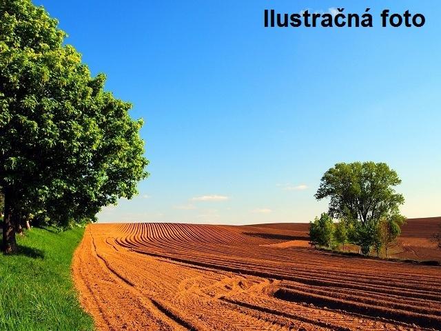 Orná pôda 11.271 m2, 3 parcely, Galanta, 12.271 €
